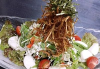 パリパリごぼうと山芋のサラダ